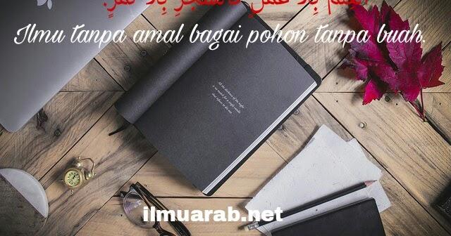 Kata Mutiara Bahasa Arab Tentang Pendidikan Beserta Artinya Lengkap Ilmu Arab