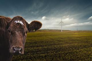 Ücretsiz Hayvan Resmi ve Hayvan Görseli Hayvan Resimleri - En Güzel Resimler, Fotoğraflar, Resimleri  Komik Hayvanlar - En Güzel Resimi, Fotoğraf, Resimi Anadoludaki vahşi hayvanlar  İlginç hayvan fotoğrafları Son Dakika - En komik hayvan fotoğrafları - Güncel Haberler Hayvan Görseller, Stok Fotoğraflar ve Vektörler Otobur Hayvan Fotoğraflar, Resimler Ve Görseller Vahşi Hayvanlar Fotoğraflar, Resimler Ve Görseller