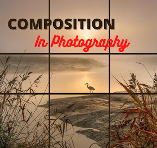 Understanding Composition in Photography | How to Take Better Photos