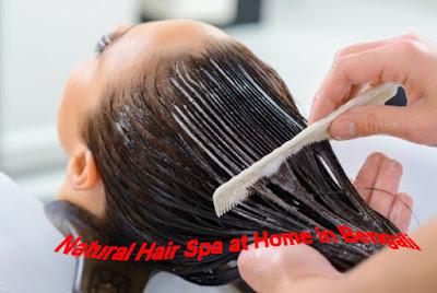 Natural Hair Spa at Home in Bengali | চুল ভালো রাখতে নেচারেল হেয়ার স্পা
