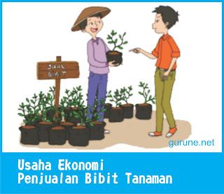 usaha ekonomi penjualan bibit tanaman