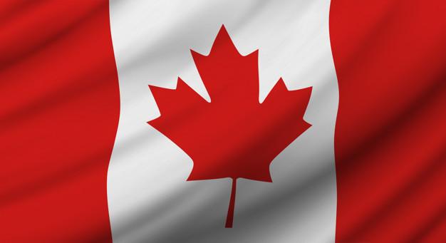 Study in Canada: Carleton University Richard J. Van Loon Scholarships 2020/2021 for African Students