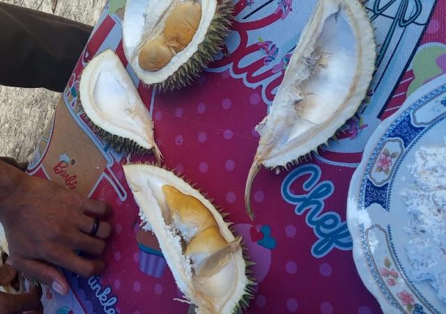 Desa durian aursati