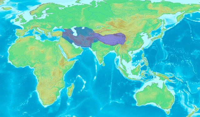 timurid empire on world atlas