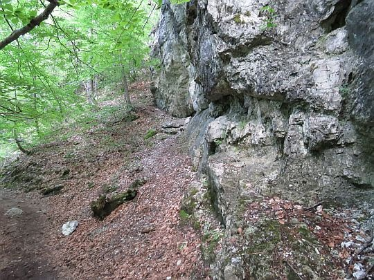 Ściana wychodni.
