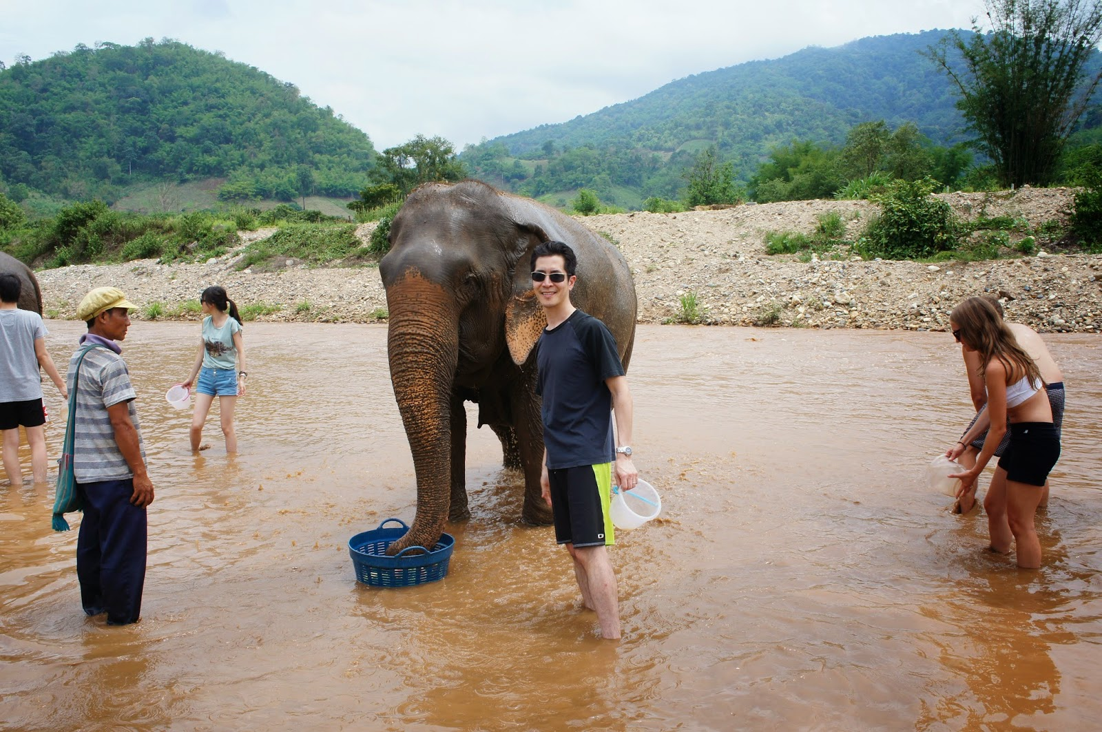 Chiang Mai - You can get up close to the elephants
