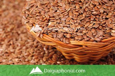 Hạt Lanh - Flaxseeds - Dai Gia Pho Nui