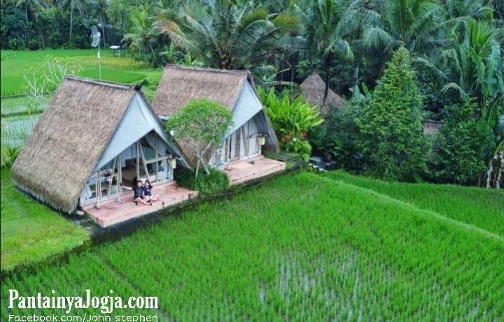 Gubuk Sawah Villa Padi Shack  Bali