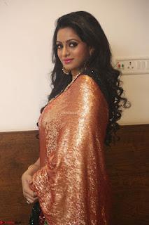 Udaya Bhanu lookssizzling in a Saree Choli at Gautam Nanda music launchi ~ Exclusive Celebrities Galleries 134.JPG