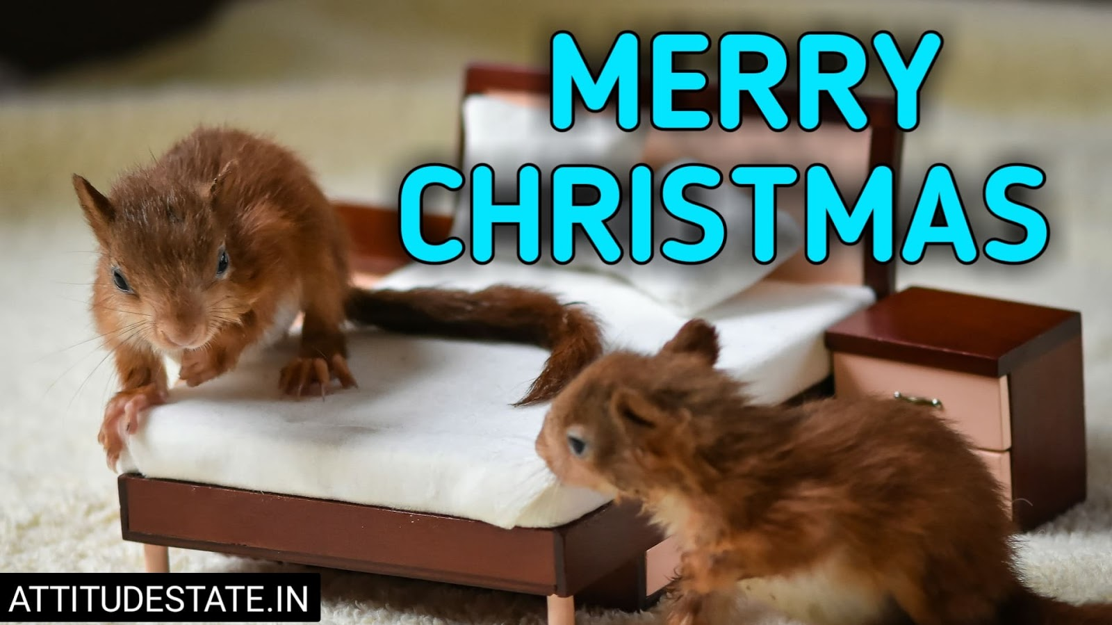 funny merry christmas wishes