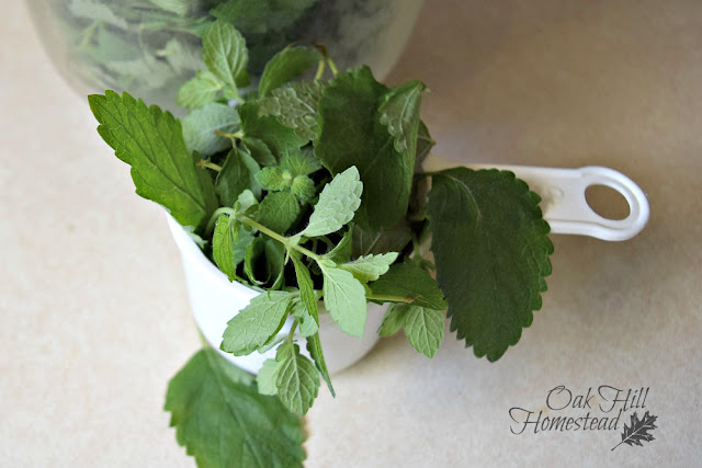 Three ways to make lemon balm lemonade.