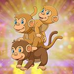Games4King -   G4K Confor…