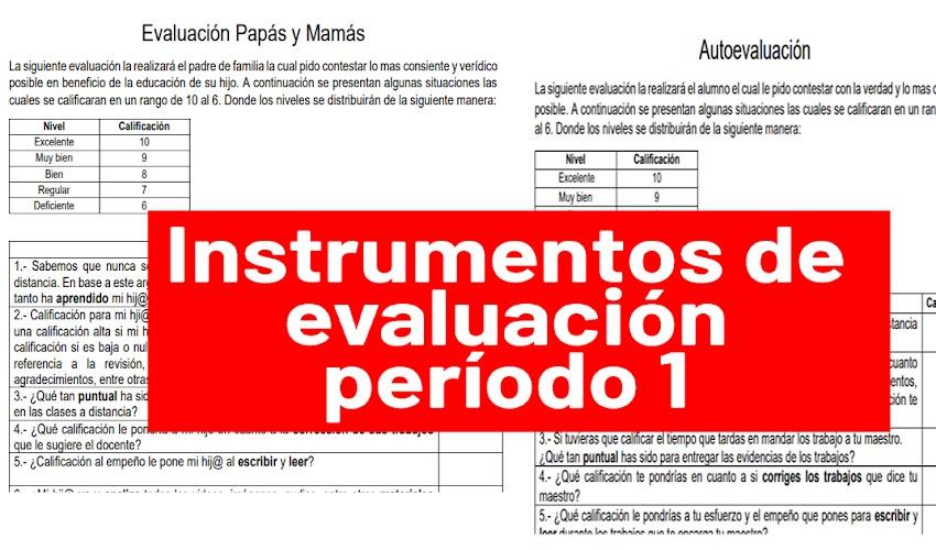 Formatos de autoevaluación y coevaluación (con padres) cuantitativos y cualitativos