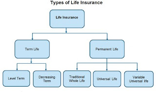 If You Read Nothing Else Today, Read This Report on Life Insurance Policy Types