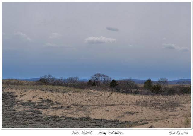 Plum Island: ... cloudy and rainy...