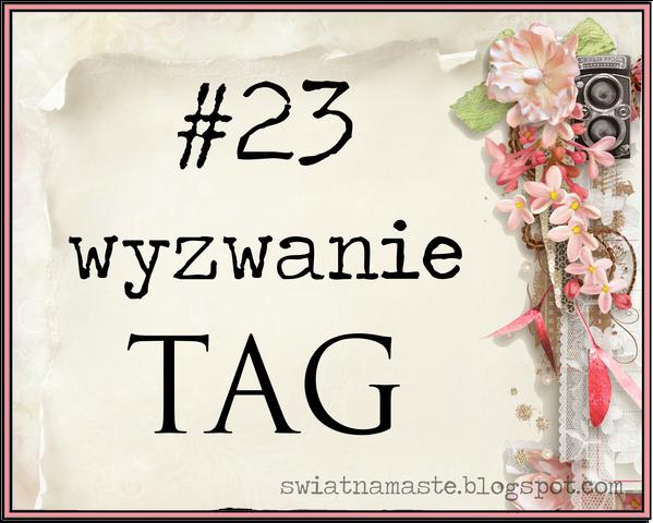 http://swiatnamaste.blogspot.com/2014/11/23-wyzwanie-tag.html