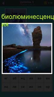 по всему берегу в воде плавает биолюминесценция 667 слов
