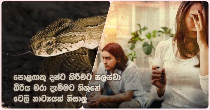https://www.gossiplankanews.com/2019/07/husband-try-tokill-wife-with-snake.html