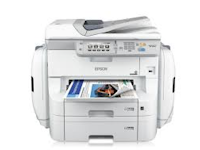 Epson WorkForce Pro WF-R8590 Printer Driver Support