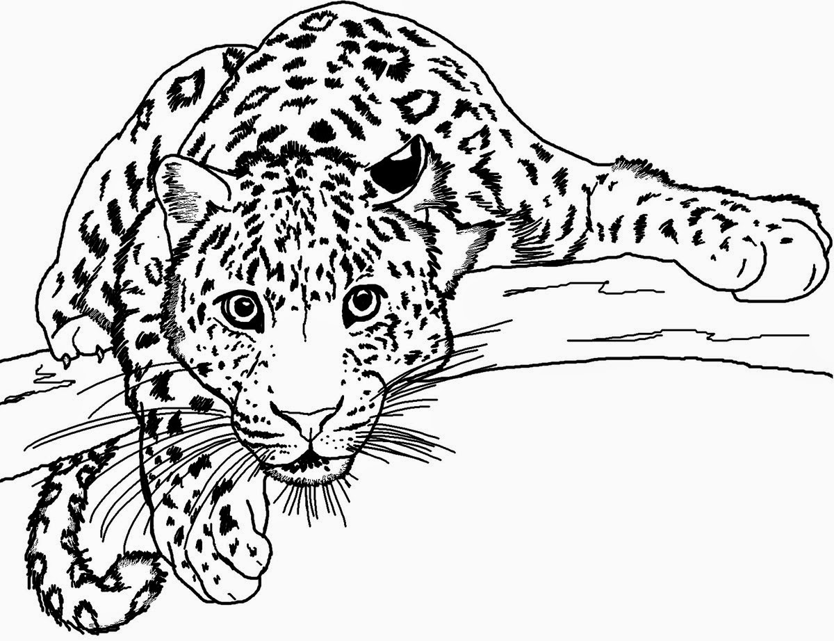 4 Menggambar Naga Wikihow February 2015 Uari Studio Gambar Animasi