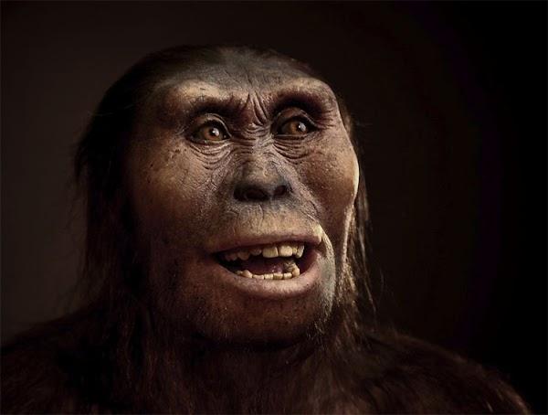 Cuando tres especies de antepasados humanos, caminaron por la Tierra
