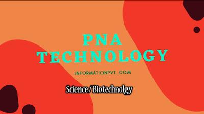 PNA Technology