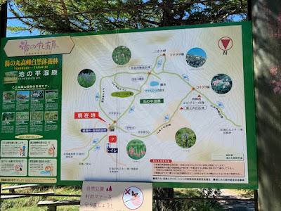 池の平湿原 散策路案内図