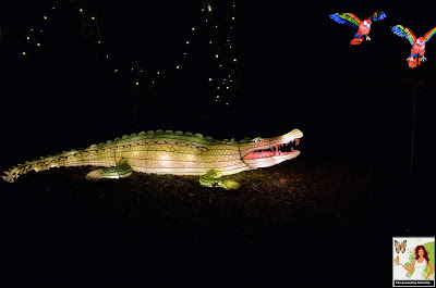 Illuminated Crocodile Alligator Bronx Zoo Holiday of Lights 2019