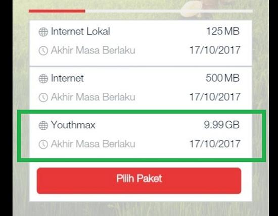 Apa Kegunaan Kuota Youthmax Telkomsel?