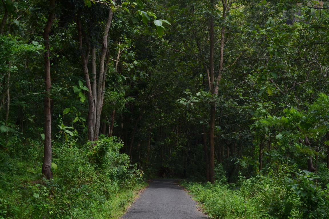Obyek Wisata Batu Seribu Sukoharjo Makmur Asal Usil