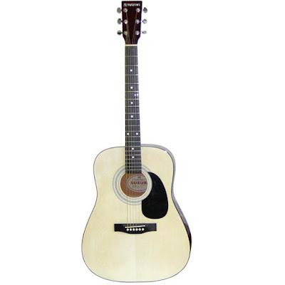 dan guitar suzuki sdg 6nl