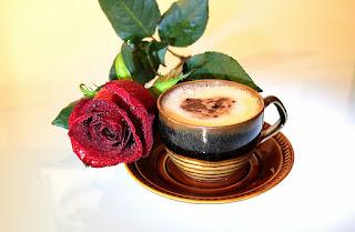 antioksidan kopi dalam tubuh