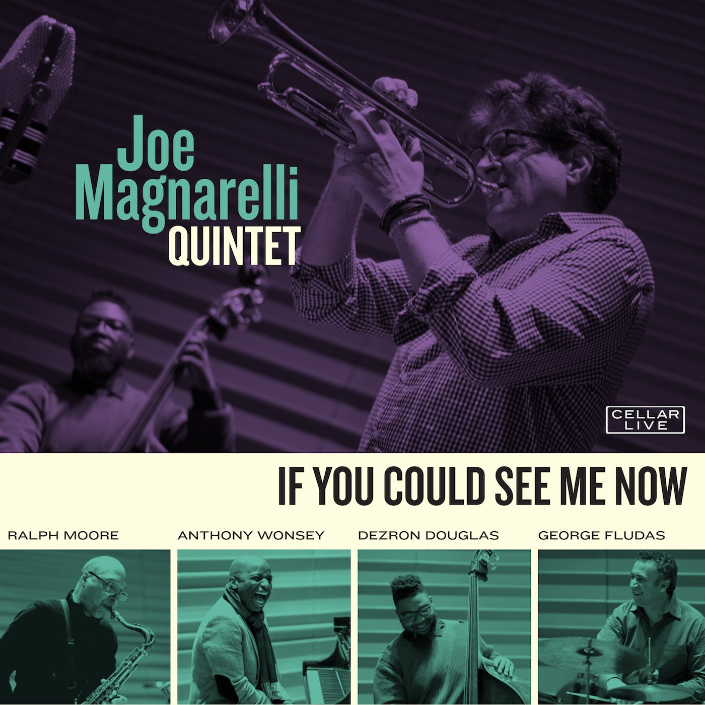 JOE MAGNIARELLI: IF YOU COULD SEE ME NOW