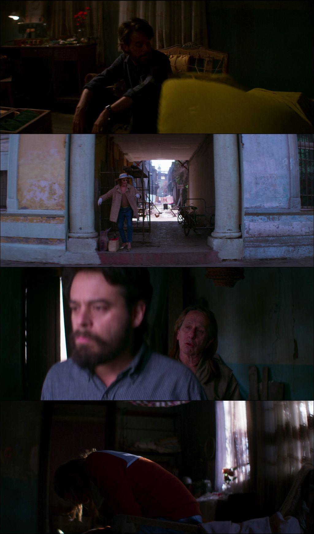 Tengo Miedo Torero (2020) HD 1080p Latino