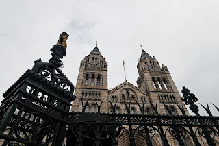 The Natural History Museum, on the Cromwell Road