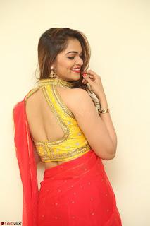Actress Ashwini in Golden choli Red saree Spicy Pics ~  087.JPG