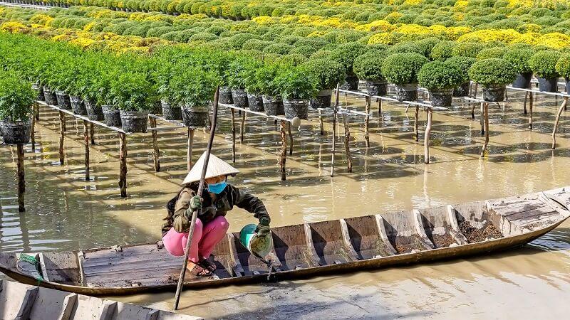 Ảnh người nông dân đang tưới hoa tại làng hoa sa đéc