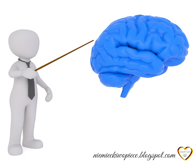 Narządy wewnętrzne - innere Organe