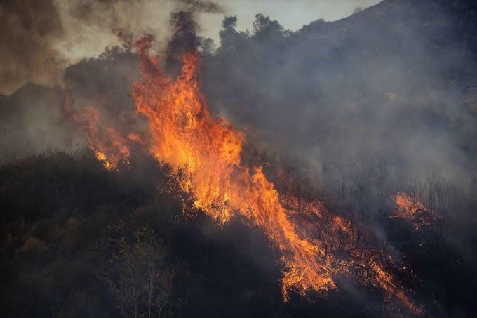 Már több mint 70 ház égett le az ausztrál erdőtűzben