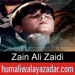 https://humaliwalaazadar.blogspot.com/2019/08/zain-ali-zaidi-nohay-2020.html