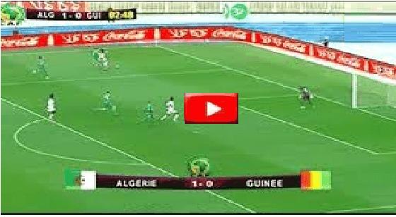 مشاهدة مبارة الجزائر وغينيا بدور 16 كأس الامم بث مباشر يلا شوت
