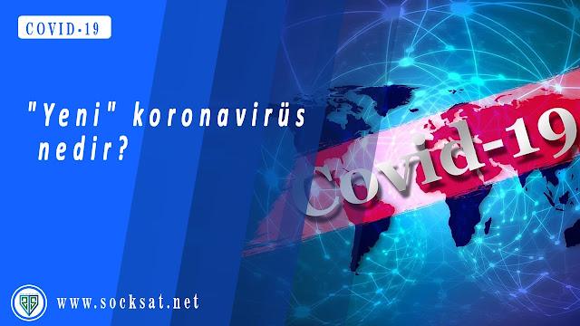 Koronavirüs hastalığı COVID-19, corona, corona virus, coronavirus, koronavirus, sars, sars virusu, covid, covid 19, covid19, korona vaka, korona son dakika, korona haritasi, korona sayisi, korona hakkinda, koronavirus haqqinda, korona ikinci dalqa, korona ikinci dalga, korona virus ikinci dalga. Socksat, soksas, sock, socks, socks at,