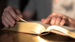 Notas Bíblicas | Belverede