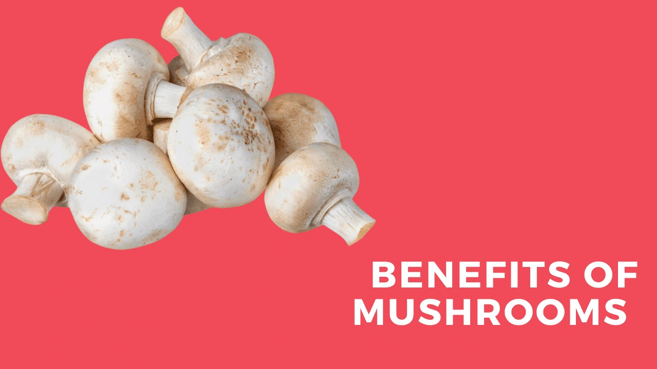 Three Benefits of Mushrooms That You May Not Know About