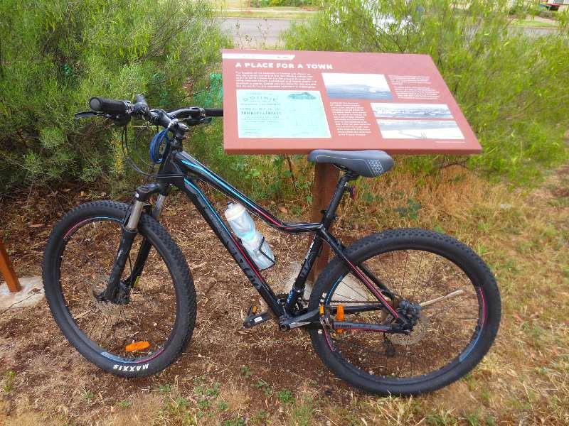Giant Liv Mountain Bike