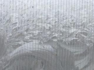 Eisblumen im Gewächshaus im Winter (c) by Joachim Wenk