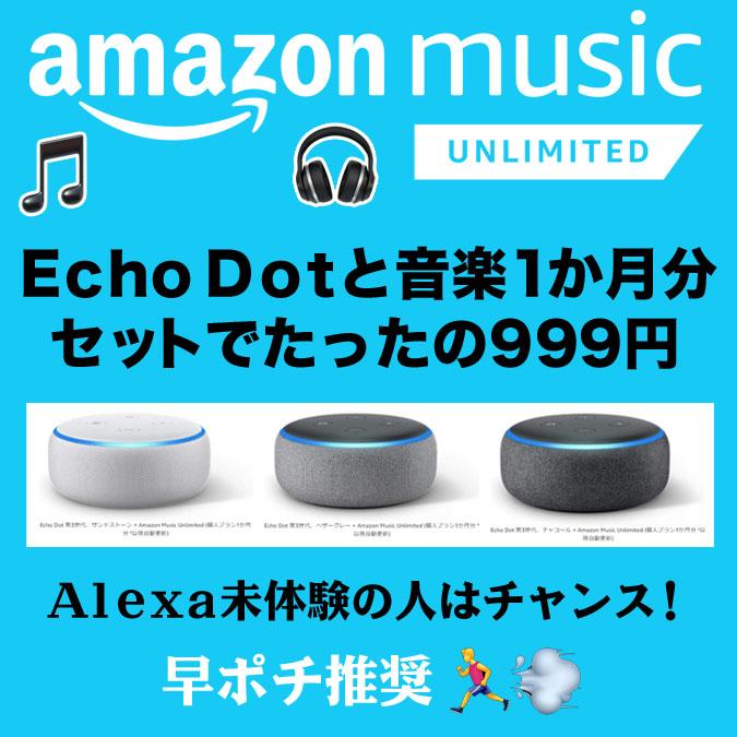 Echo Dot 第3世代と音楽6500万曲以上聞き放題1か月分セットでたったの999円
