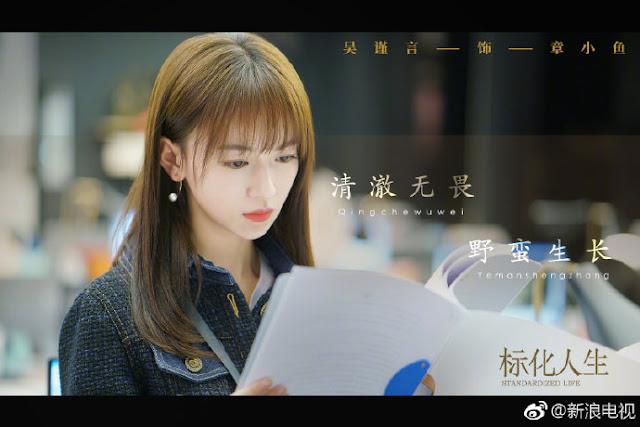 Standardized Life cdrama Wu Jinyan
