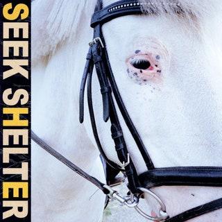 Iceage - Seek Shelter Music Album Reviews