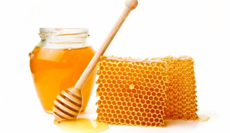 داسة جدوى فكرة مشروع تجارة عسل النحل الأصلى فى مصر 2019